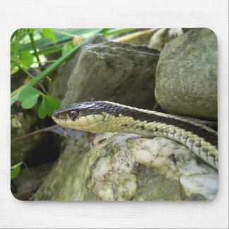 Ribbon snake mouse mat