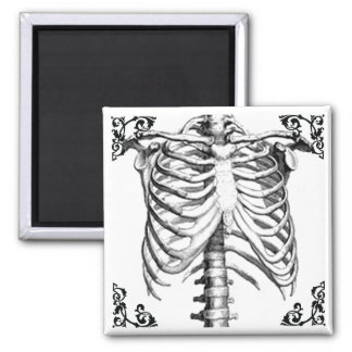 Ribcage Skeleton Gothic magnet