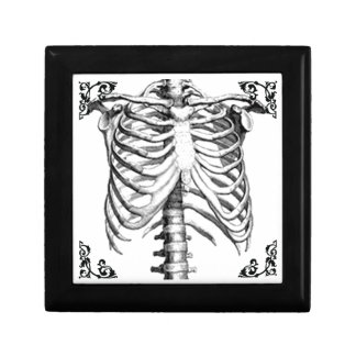 Ribcage Skeleton Gothic Punk Jewelry Box