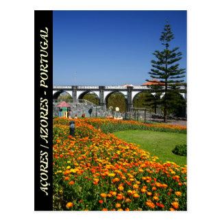 Ribeira Grande gardens Postcard