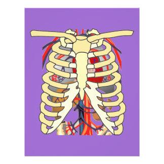 "Ribs Veins Enlarged Heart 8.5"" X 11"" Flyer"
