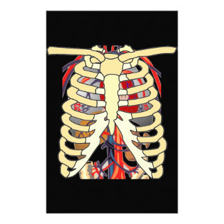 Ribs Veins Enlarged Heart Stationery