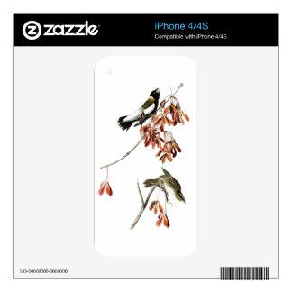 Rice Bird John James Audubon Birds of America Skins For The iPhone 4