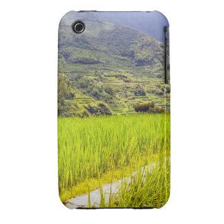 Rice Field 2 Case-Mate iPhone 3 Case