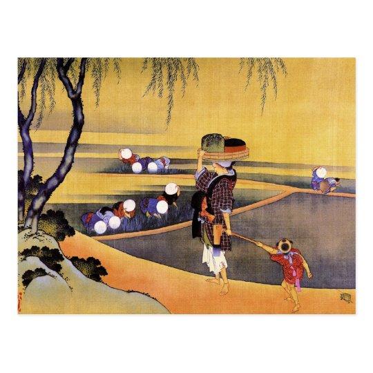 Rice Fields Hokusai Japanese Fine Art Postcard
