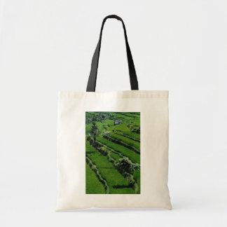 Rice paddy fields, Bali, Indonesia Tote Bags
