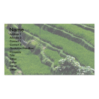 Rice paddy fields, Bali, Indonesia Business Card