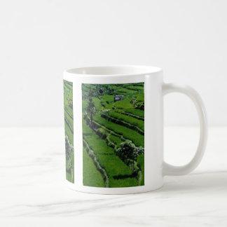 Rice paddy fields, Bali, Indonesia Mug