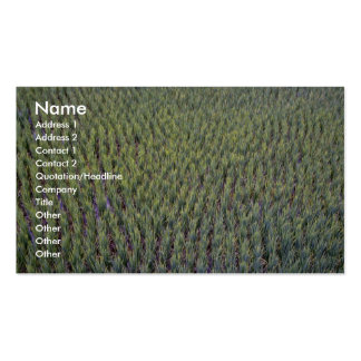 Rice paddy, Indonesia Business Card Templates