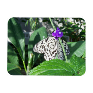Rice Paper Butterfly Magnet