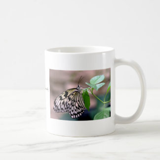 Rice Paper Butterfly Coffee Mugs