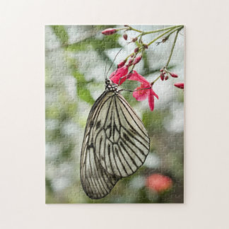 Rice Paper butterfly, Paper Kite, Idea leuconoe Jigsaw Puzzle