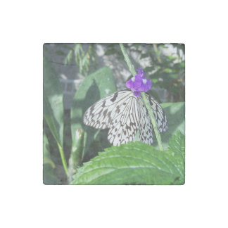 Rice Paper Butterfly Stone Magnet