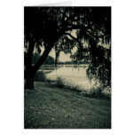 Rice Pond Landscape Greeting Card