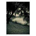 Rice Pond Landscape Greeting Cards