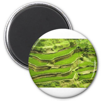 Rice terrace in Bali 2 Inch Round Magnet
