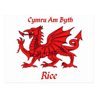 Rice Welsh Dragon Postcard