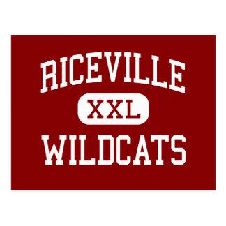 Riceville - gatos monteses - elemental - Riceville Postales