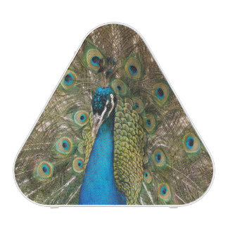 Rich Color Photo of Peacock Bird Bluetooth Speaker