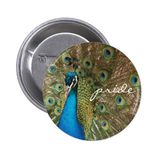 "Rich Color Photo of Peacock with ""Pride"" Message Pinback Button"