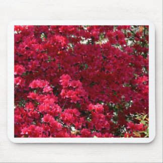 Rich Deep Springtime Color Mouse Pad