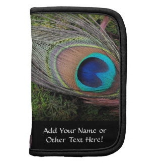 Rich, Elegant Peacock Feather Photograph Planner