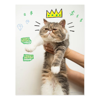 Rich King Cat Post Cards