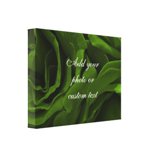 Rich olive green velvety roses flower photo canvas print