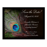 Rich Peacock Feather Green Moss Save the Date Card Postcard