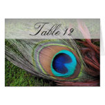 Rich Peacock Feather/Green Moss Table Number Greeting Card