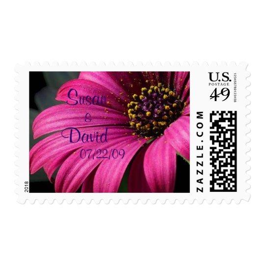 Rich Pink Gerber Daisy Wedding Postage