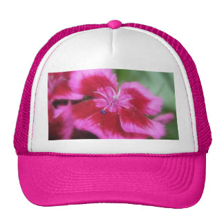 Rich Rose Colored Sweet William Trucker Hat