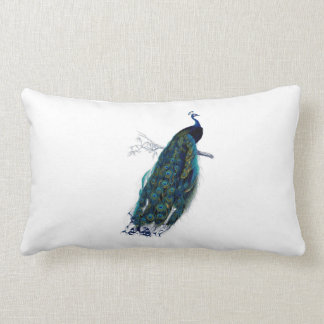 Rich Royal Blue Peacock on White Lumbar Pillow