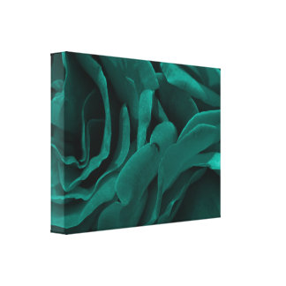 Rich teal blue-green velvety roses floral photo canvas print