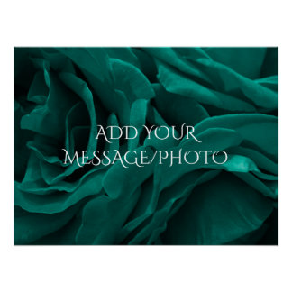 Rich teal blue-green velvety roses floral photo poster