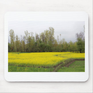 Rich yellow mustard fields in Kashmir Mousepads