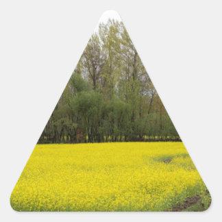 Rich yellow mustard fields in Kashmir Sticker