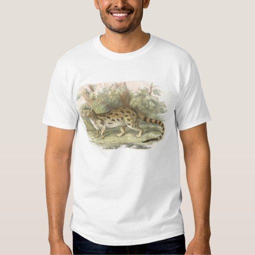 Richard Lydekker - Blotched Genet Camisas
