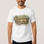 Richard Lydekker - Fossa T-Shirt
