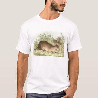 Richard Lydekker - Long-Nosed Bandicoot T-Shirt