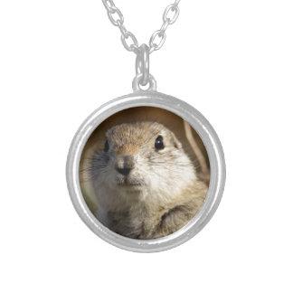Richardsons Ground Squirrel, aka, Prairie Gopher Round Pendant Necklace