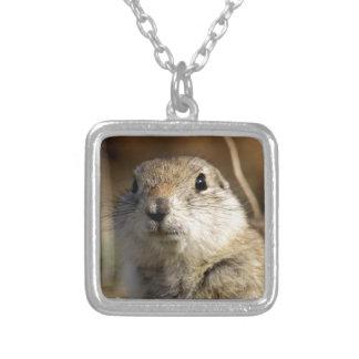 Richardsons Ground Squirrel, aka, Prairie Gopher Square Pendant Necklace