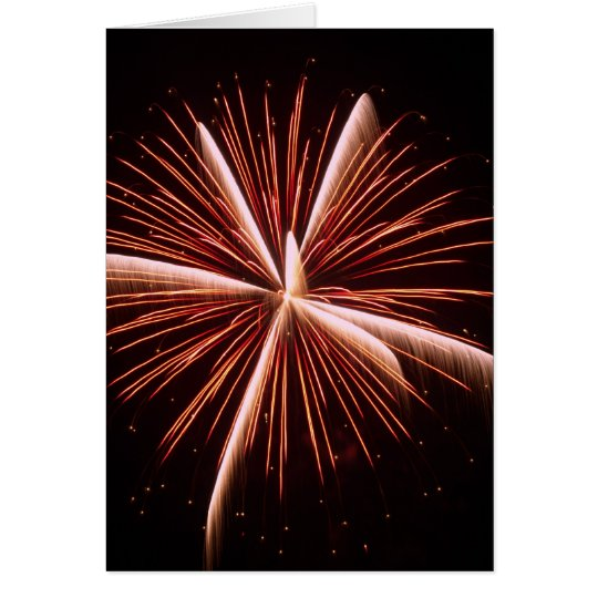 Richland Center Wisconsin Fireworks 2008 (C1) Card
