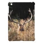 Richmond Park stag, London Case For The iPad Mini