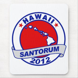 Rick Santorum Hawaii Mouse Pad