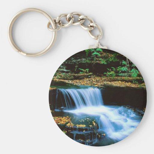 Ricketts Glen Falls Keychain