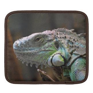 Rickshaw Sleeve  with head of  Iguana Lizard