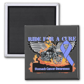 Ride For a Cure - Stomach Cancer 2 Inch Square Magnet