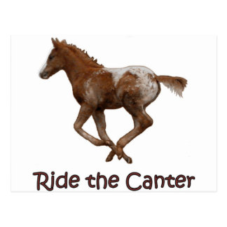 Ride the Canter Postcard