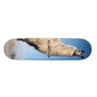 ride the llama skateboard deck